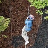 Zip Line near Denali