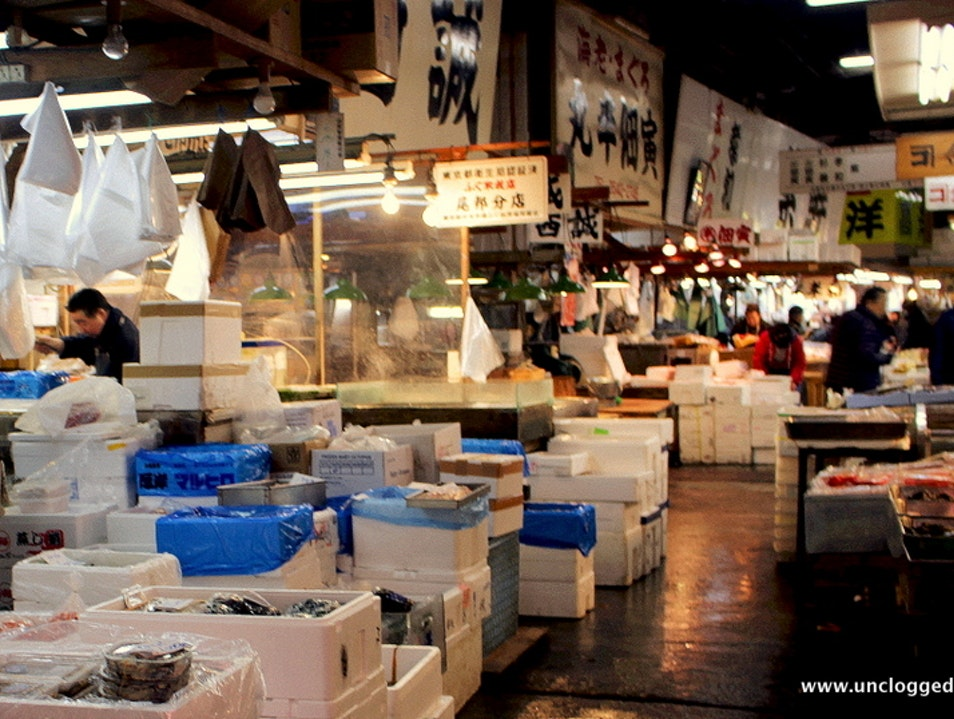 Best Catch in Tokyo: The Tsukiji Fish Market Chūō Ku  Japan