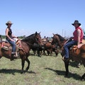 In the middle of 1000's of acres of pasture land outside of Vici, Oklahoma. Arnett Oklahoma United States