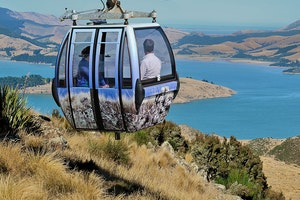Lyttelton, NZ Highlights