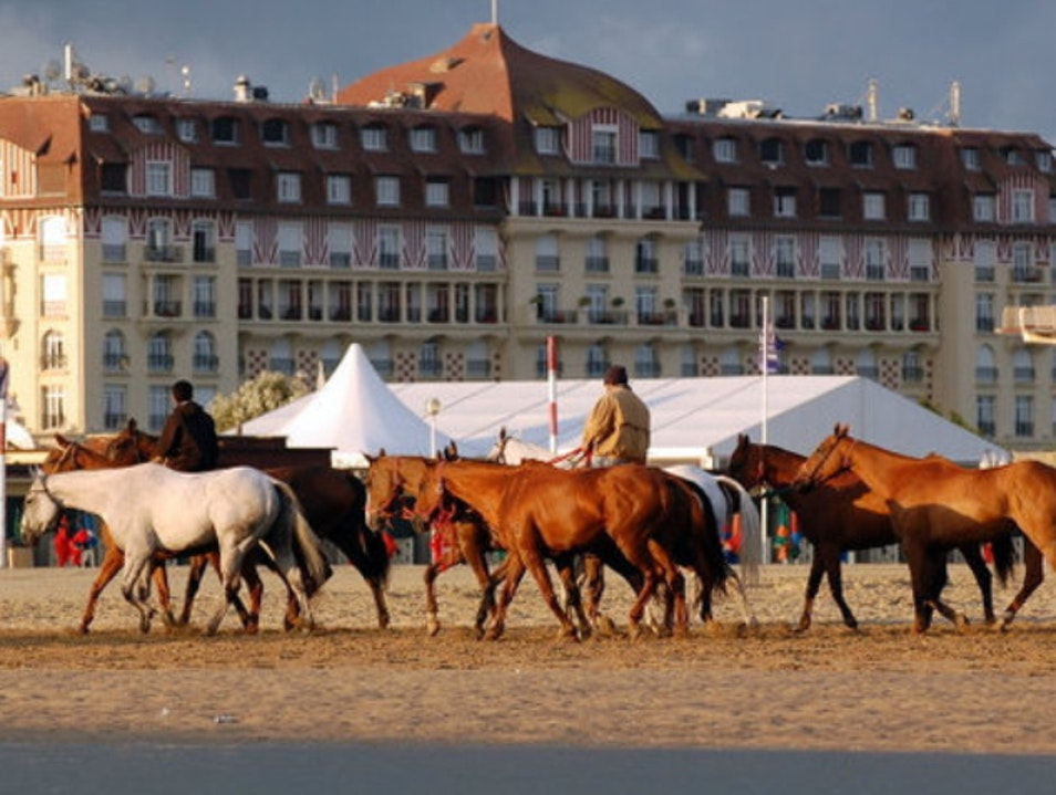 All The Pretty Horses Deauville  France