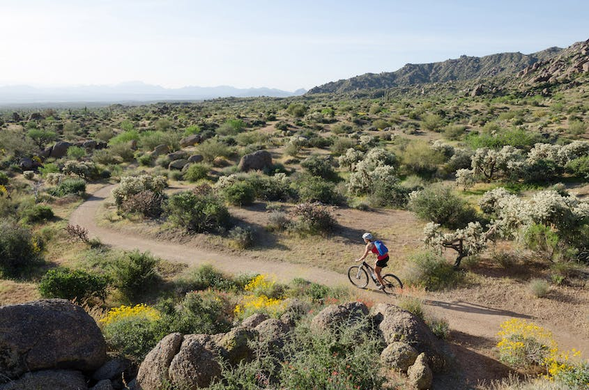 Mountain biking in places including the McDowell Mountains makes for an exhilaratingly active way to see the desert scenery.