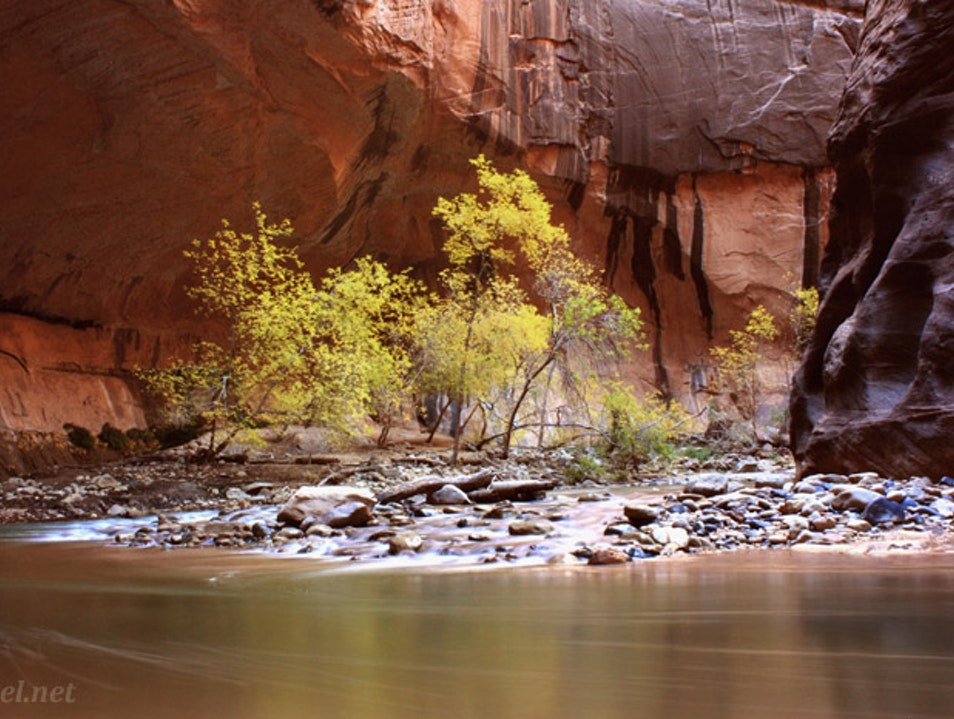 Serenity on the Virgin River: The Narrows in Autumn