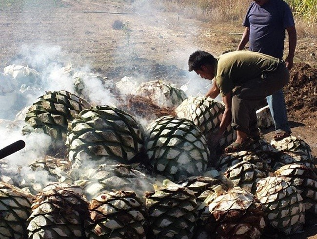 Drinking Mezcal with Del Maguey's Ron Cooper, the Spirit King