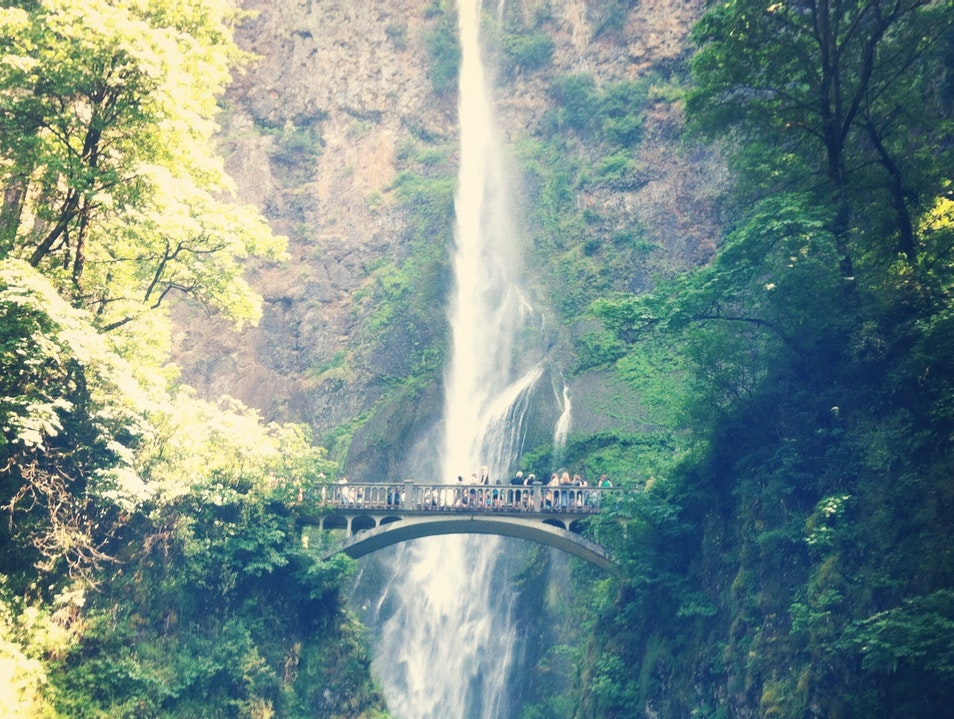 The Tallest Waterfall in Oregon? Corbett Oregon United States