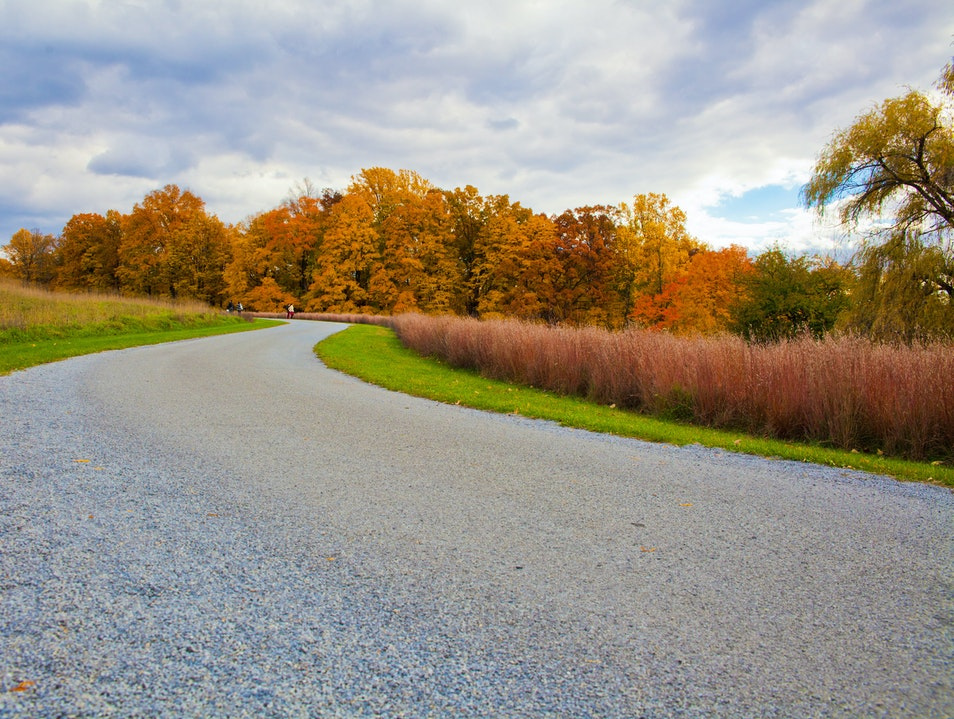 Autumn and Art in Upstate New York