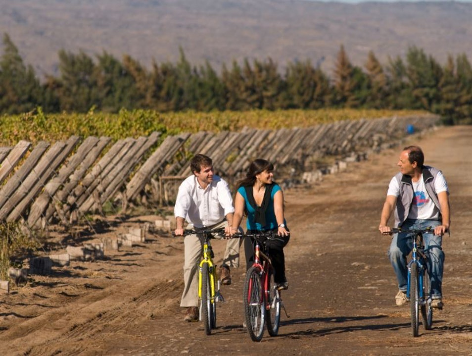 Wine Tour on Wheels in Chacras de Coria Luján de Cuyo  Argentina