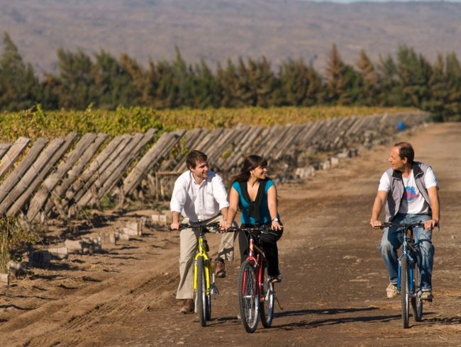 Wine Tour on Wheels in Chacras de Coria