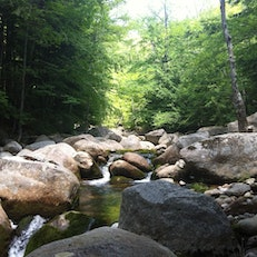 Whiteface Intervale Rd