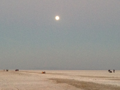 Great Rann of Kutch Dhoravar  India