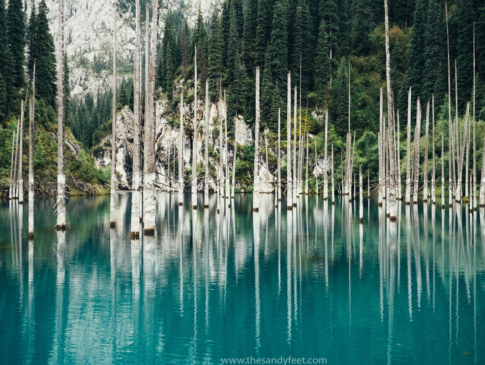 A Sunken Forest In A Sea Of Turquoise   Kyrgyzstan