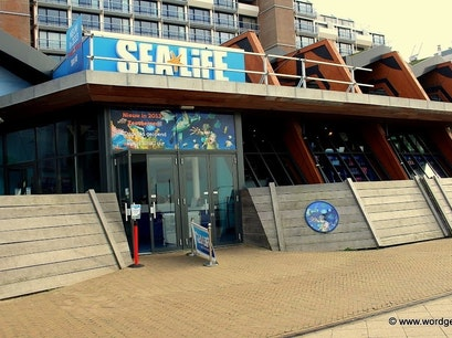 Sea Life Scheveningen The Hague  The Netherlands