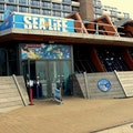Sea Life Scheveningen Den Haag  The Netherlands
