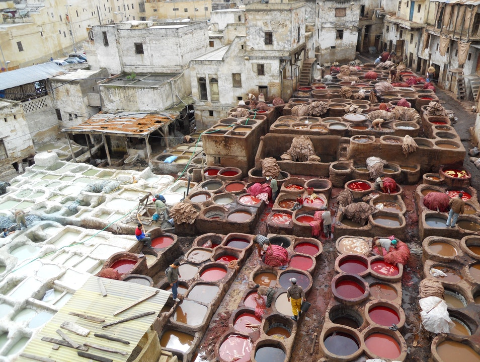 The Dye pits of Fez (Fes) Fes  Morocco