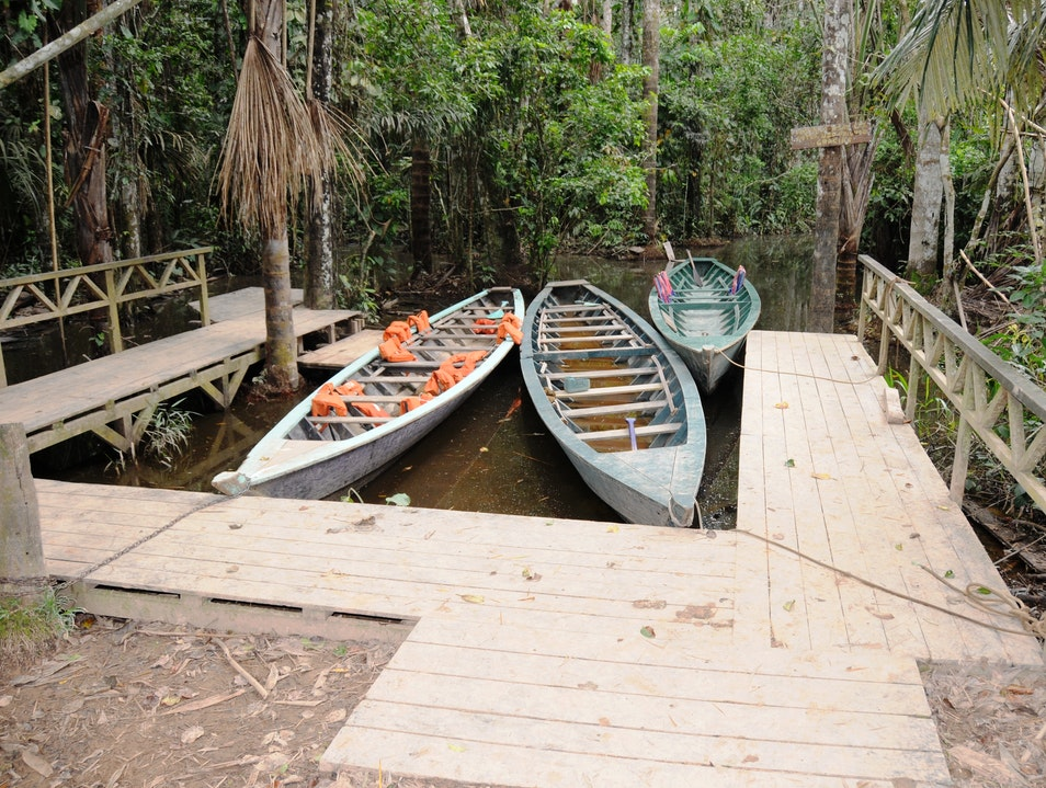 Row a Boat to the One-of-a-Kind Lake Sandoval in the Peruvian Amazon