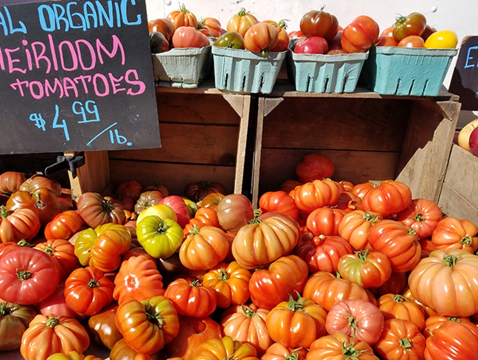 FreshFarm Dupont Circle Market Washington, D.C. District of Columbia United States
