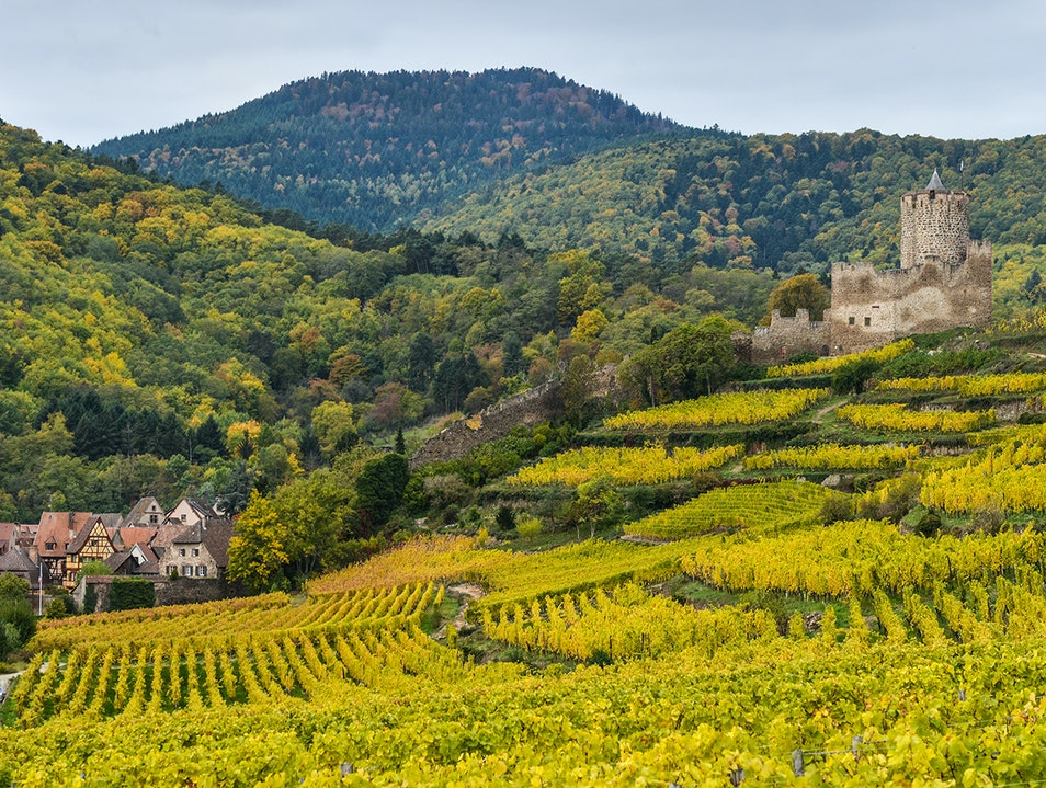 Alsace Wine Route   France