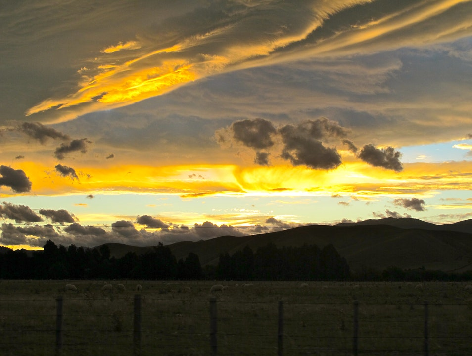 Sunset drive through Wairarapa Martinborough  New Zealand