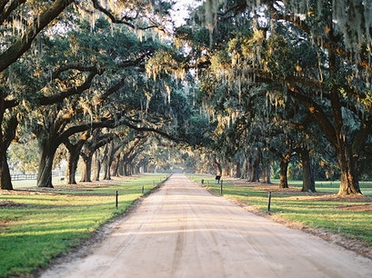 Boone Hall Plantation & Gardens Mount Pleasant South Carolina United States