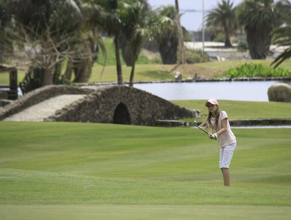 Stroll from Round to Round at Palmetto Pine