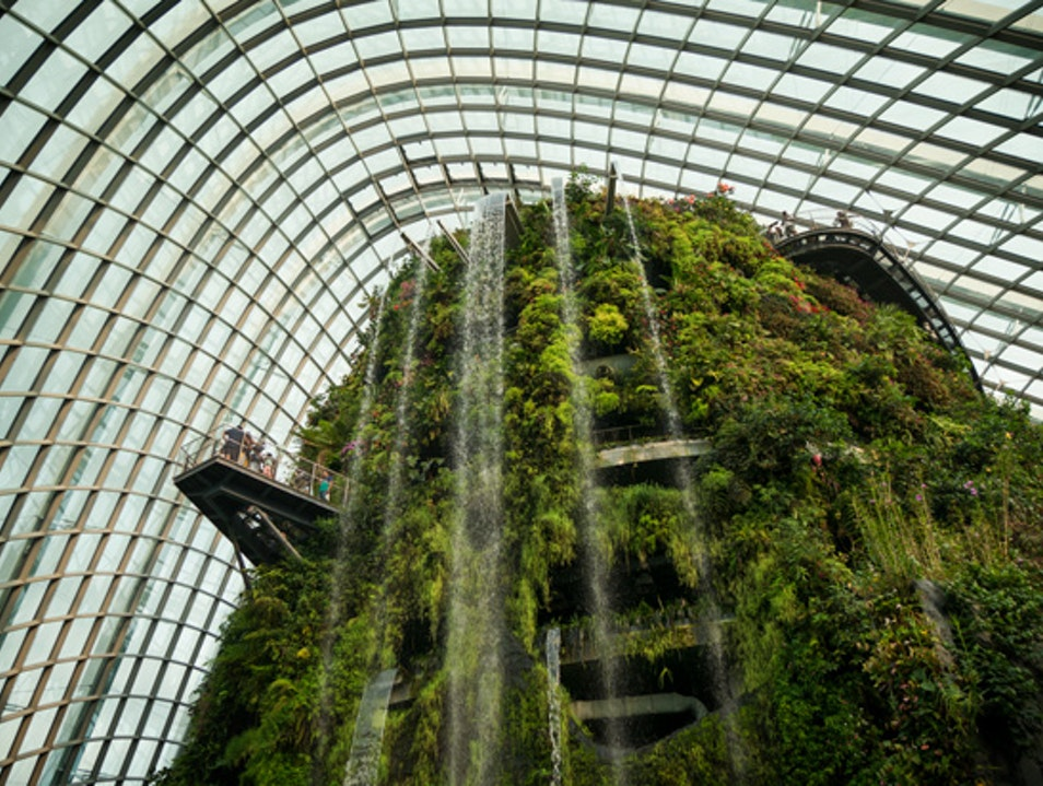 Singapore's Indoor Cloud Forest Singapore  Singapore