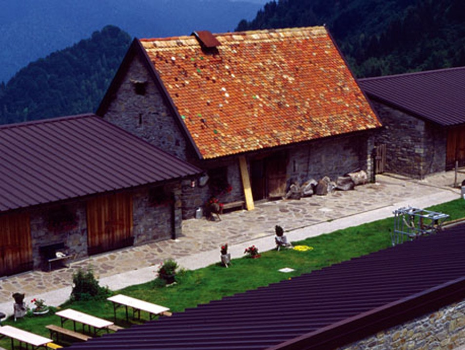 Cheese-tasting in the Italian Alps