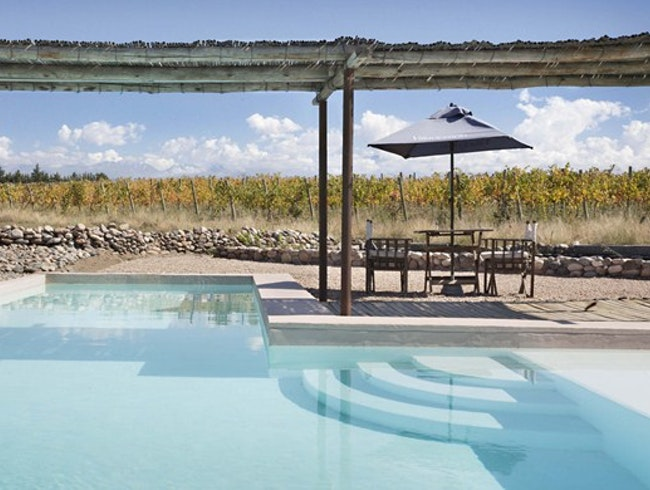 Outdoor Pool Overlooking the Vines