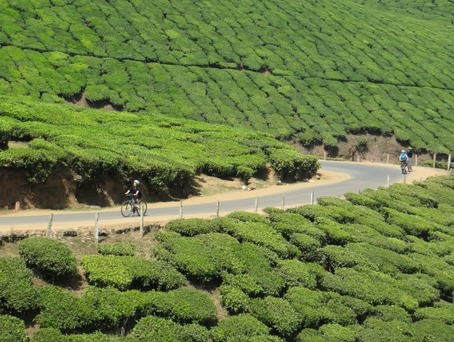 Cycling holiday through Kerala