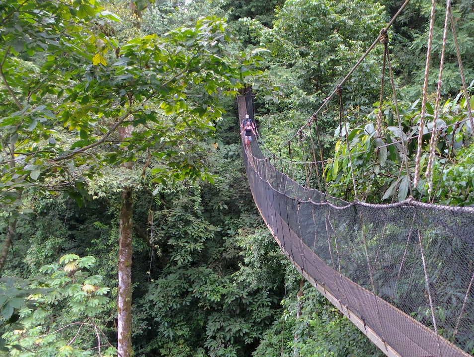 The Rainmaker Nature Park, Waterfalls And Suspension Bridges. Quepos  Costa Rica