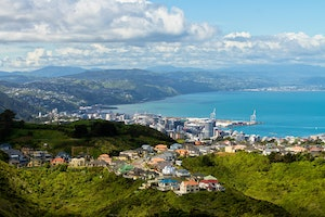 Kiwi Cool: What to See, Eat, and Drink in Wellington, New Zealand