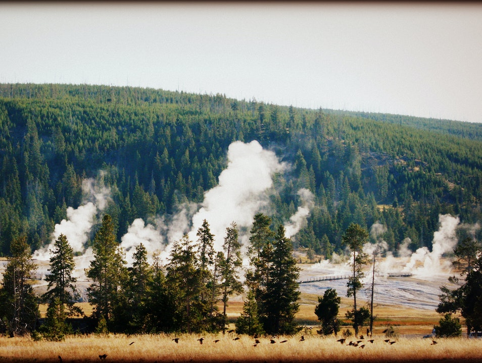 The fuming landscape Yellowstone National Park Wyoming United States