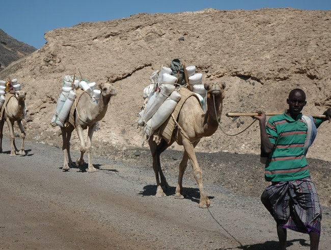Afar tribesman taking salt to trade for Ethiopian coffee.
