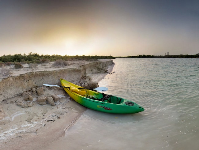 Kayak the Mangroves