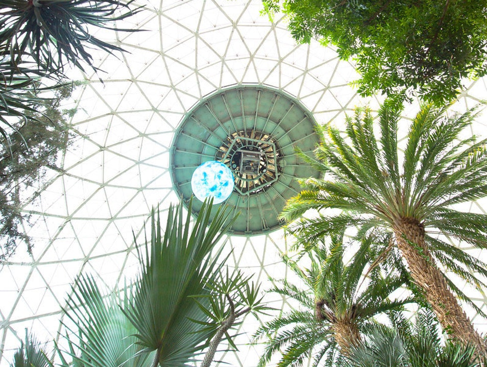 Looking Up Inside the Domes