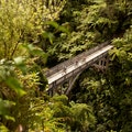 Bridge to Nowhere Whanganui National Park  New Zealand