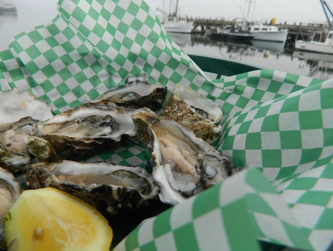 Sweetest oysters in the world in Morro Bay, CA