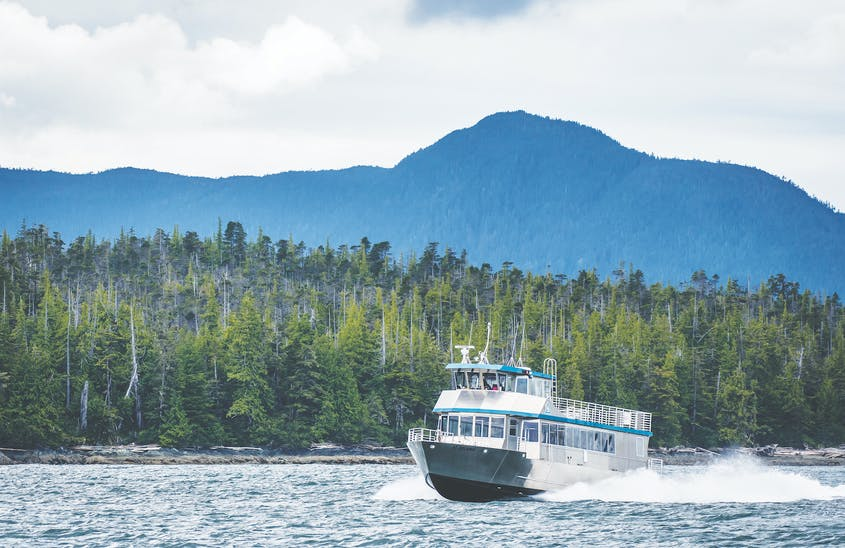 Big ship cruising may be off the table for 2021, but you can still get out on the water with John Hall's Alaska catamaran itinerary.