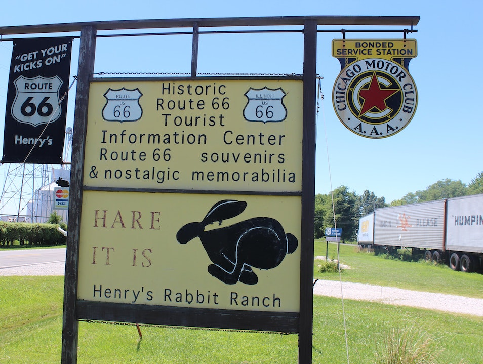 """Hare it is!"" Staunton Illinois United States"