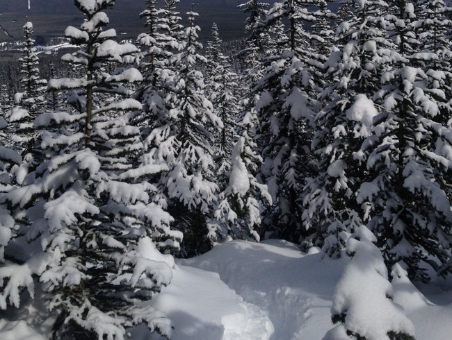 Snow Shoe Adventure in Banff National Park