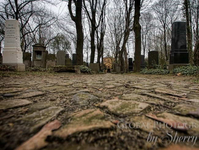 Berlin's Cemetery Tells a Story