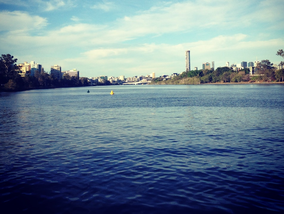 Get on the Brisbane River with the City Cat