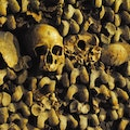 Catacombs of Paris Paris  France