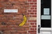 Art Galleries Tagged with a Yellow Banana
