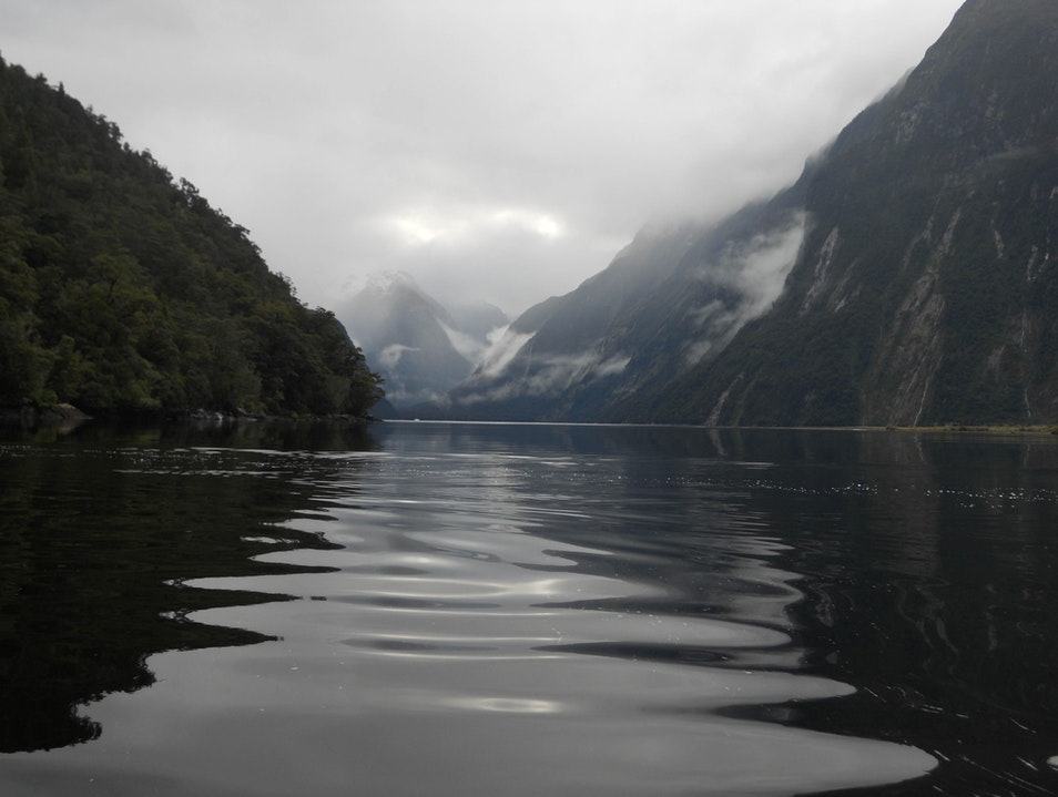 Kayaking Peaceful Milford Sound Milford Sound  New Zealand