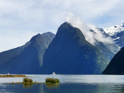 The Lion Fiordland National Park  New Zealand