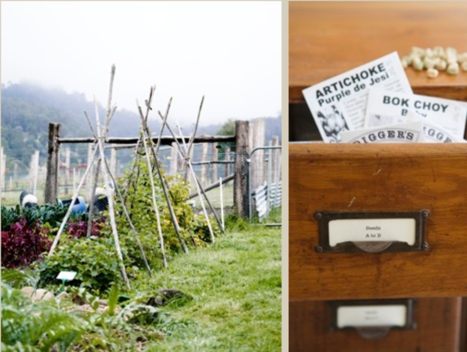 Forage and dine in The Agrarian Kitchen
