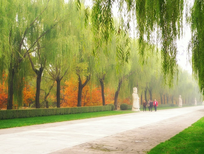 Sacred Way:  a quiet walk in China