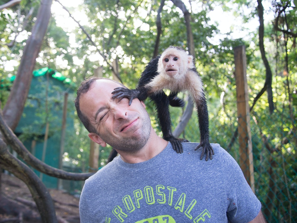 Cheeky Monkeys at Mayan Eden Eco Park  Jose Santos Guardiola  Honduras