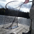 Fishing in Dalsland Bengtsfors N  Sweden
