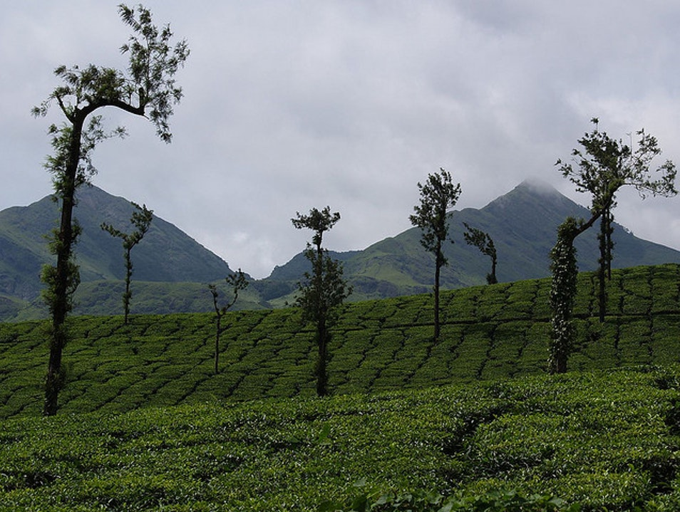 Wayanad-A hilly spicy green district Wayanad  India